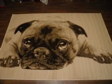 Modern Approx 8x5 160x230cm Woven Backed Pugs Rug Sale Top Quality Beiges/Creams
